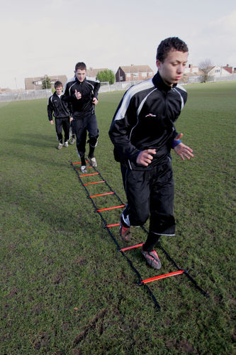 Precision Speed Agility Ladder