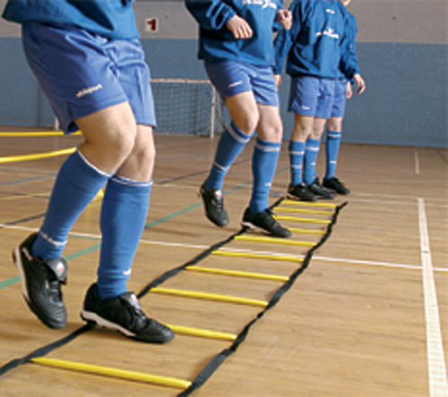 Precision Indoor Speed Agility Ladder