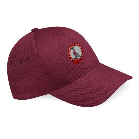 Cresselly Cricket Club Junior Cap