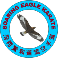 Soaring Eagle Karate Club